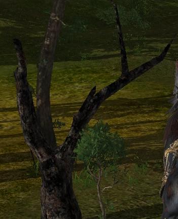 грозовое дерево ArcheAge
