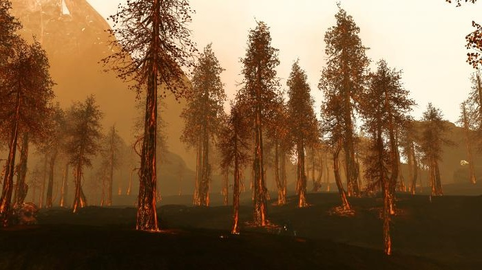 Пламенеющий лес ArcheAge