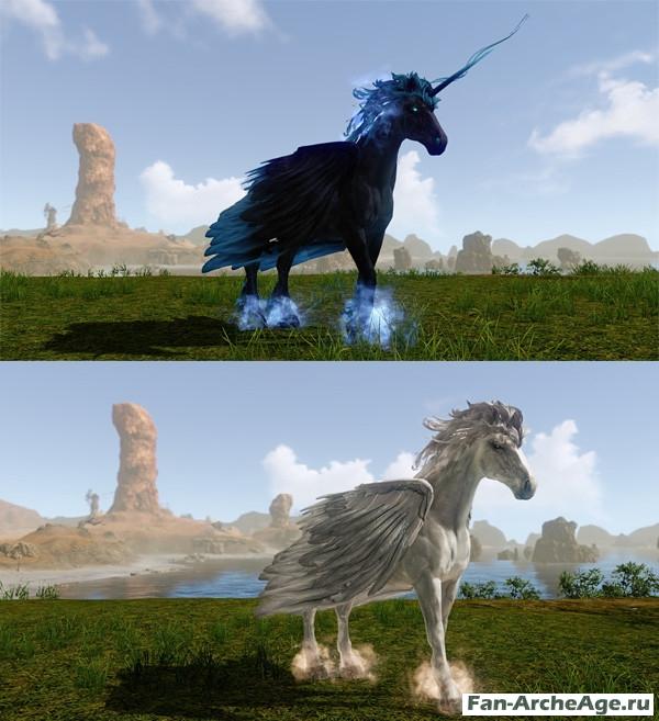 Крылатый единорог и крылатый конь archeage