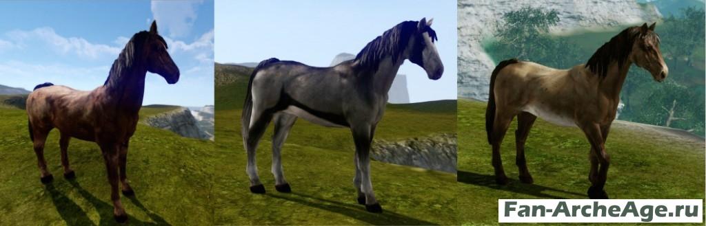 Лошадь - ездовой питомец archeage