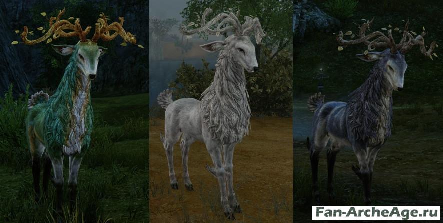 Олень - ездовое животное у эльфов archeage