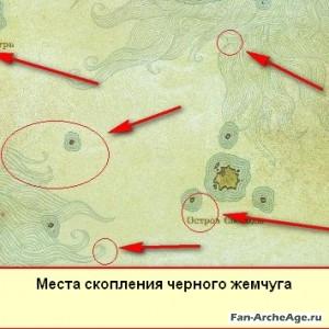 Места скопления черного жемчуга Архейдж