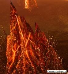 Охваченные огнем пни
